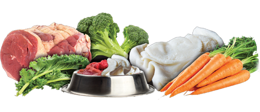 Diet Switching Protocols -