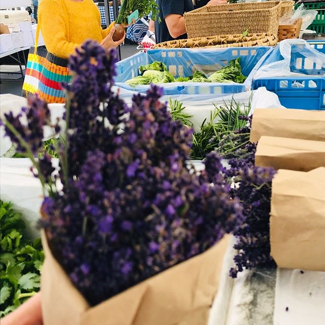 Get those shopping bags ready going to be a gorgeous farmers' market Tuesday in Downtown Manhattan Beach! So much in season and swing by the community quad with @shadehotelmb hosting a tasting from 12-1pm, we'll catch y'all tomorrow 🥕🥕 #health #wellness #community #manhattanbeach #farmersmarket #mbfm #tuesdays #11to5pm @downtownmanhattanbeach @shadehotelmb @zg_hospitality