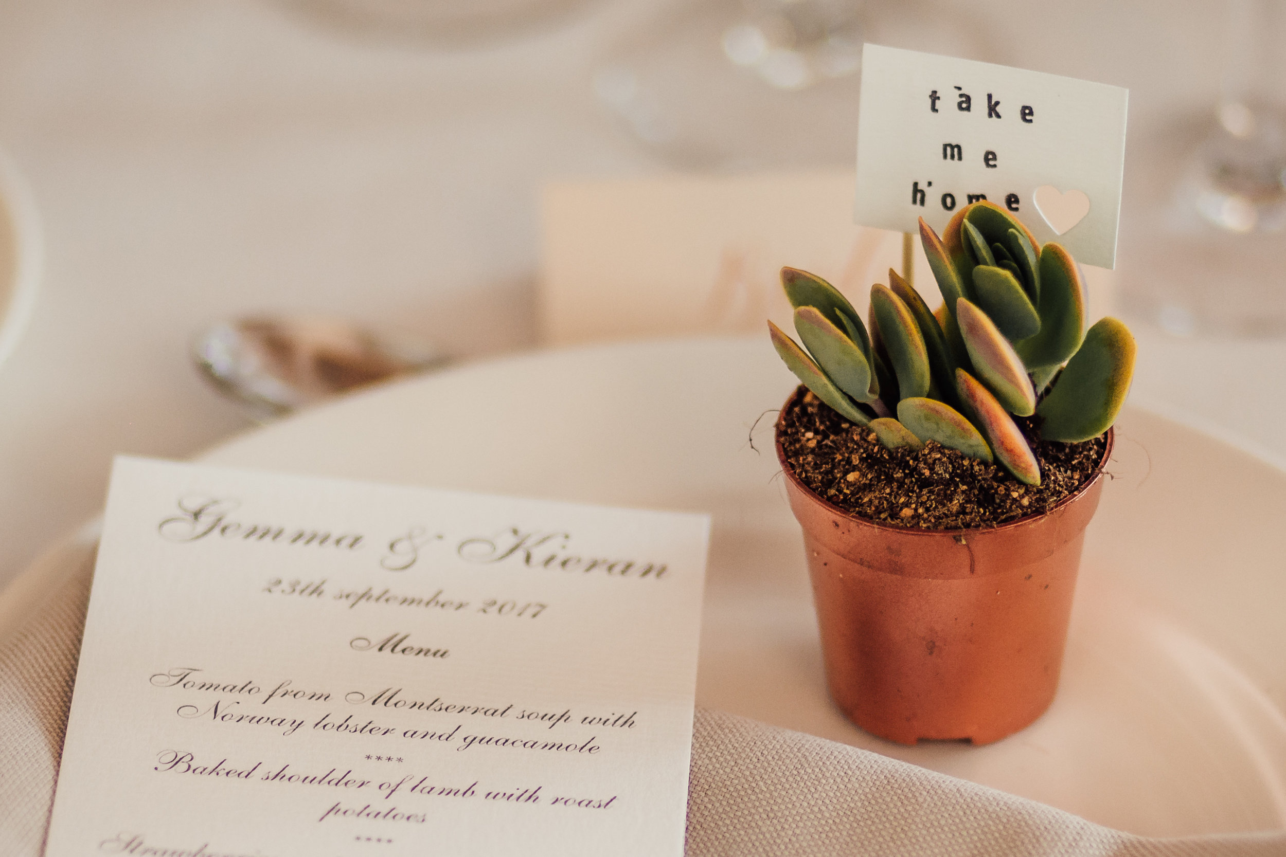 These little succulents as favours were gorgeous on this stylish wedding at El Far in the Costa Brava
