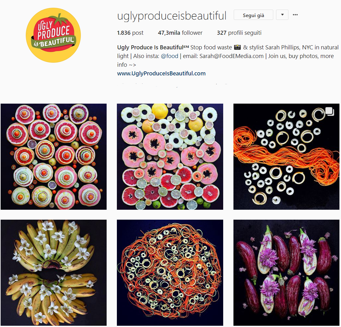 - UGLY PRODUCE IS BEAUTIFUL is the account of Sarah Philips, showcasing how