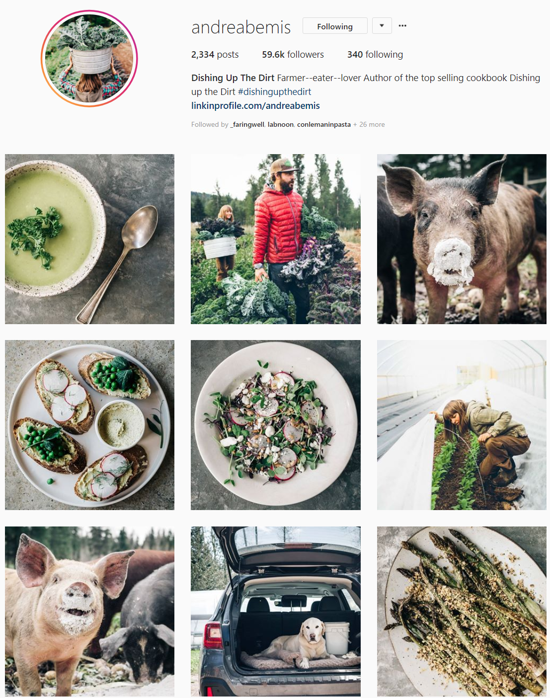 - ANDREA BEMIS is the account of Andrea, one of the best ten food blogger in the world. She and her husband make perfect simple dishes, full of colors and super healthy. Enjoy!