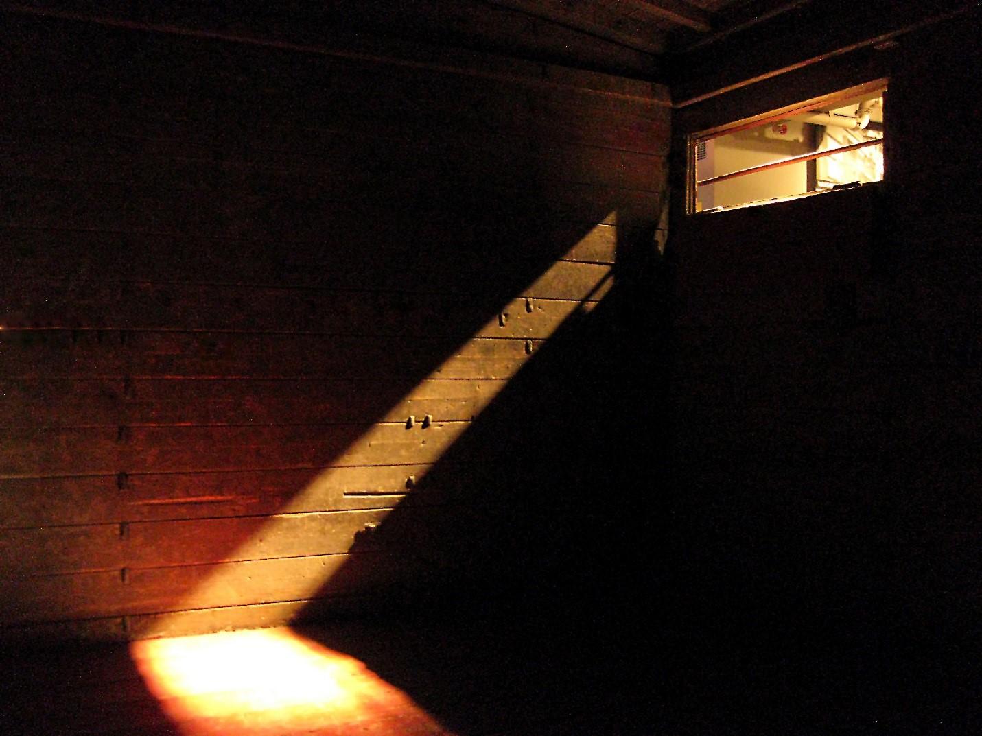 Dark, Cold Exhibit Space