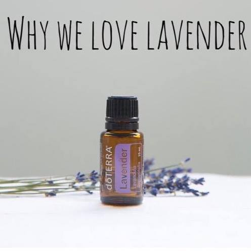 Dive in to Lavender Oil