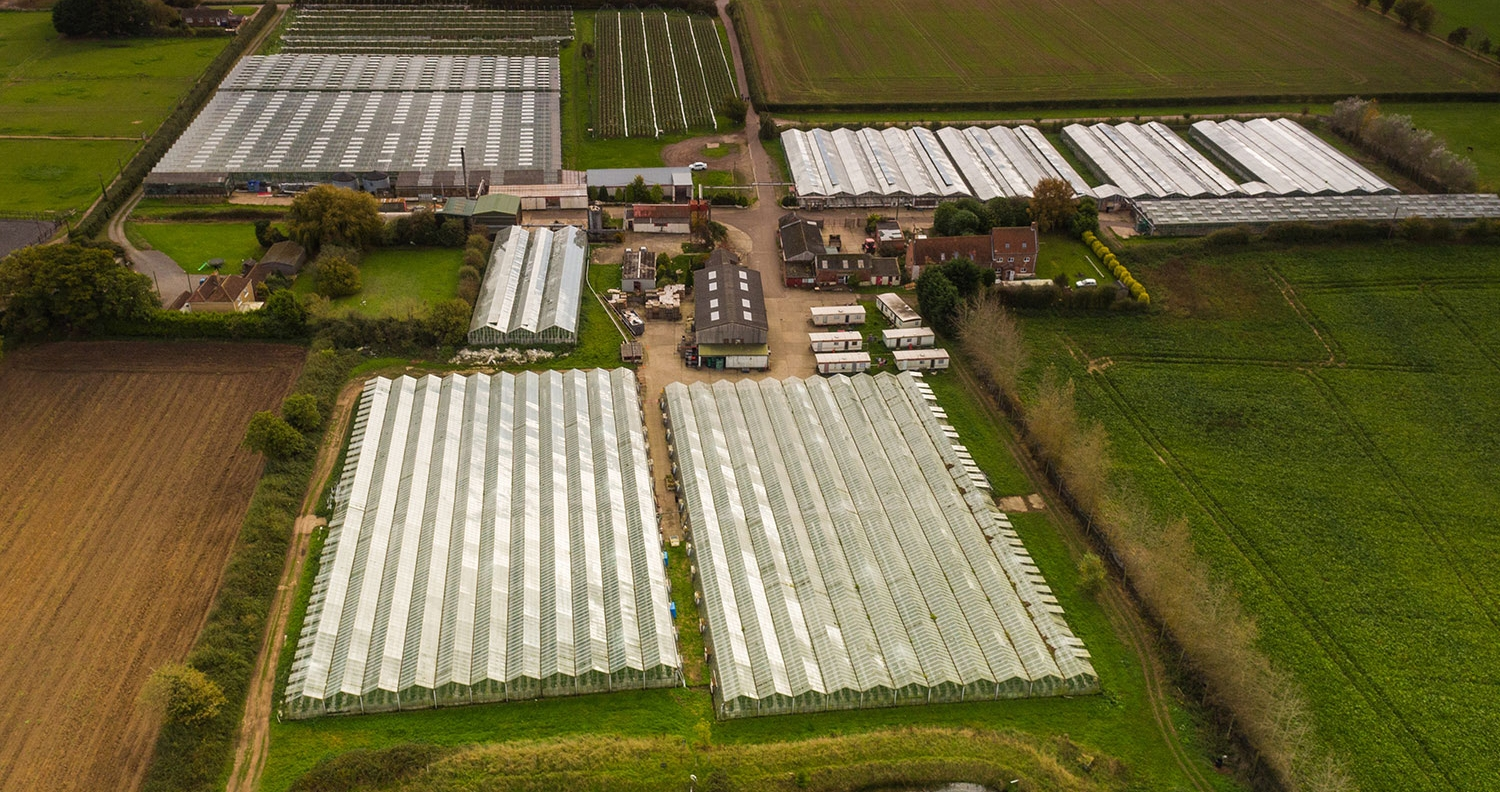Berries Direct Farming: Martham  - Low Road, Martham, NR29 4RESite Manager: Neil Spinks