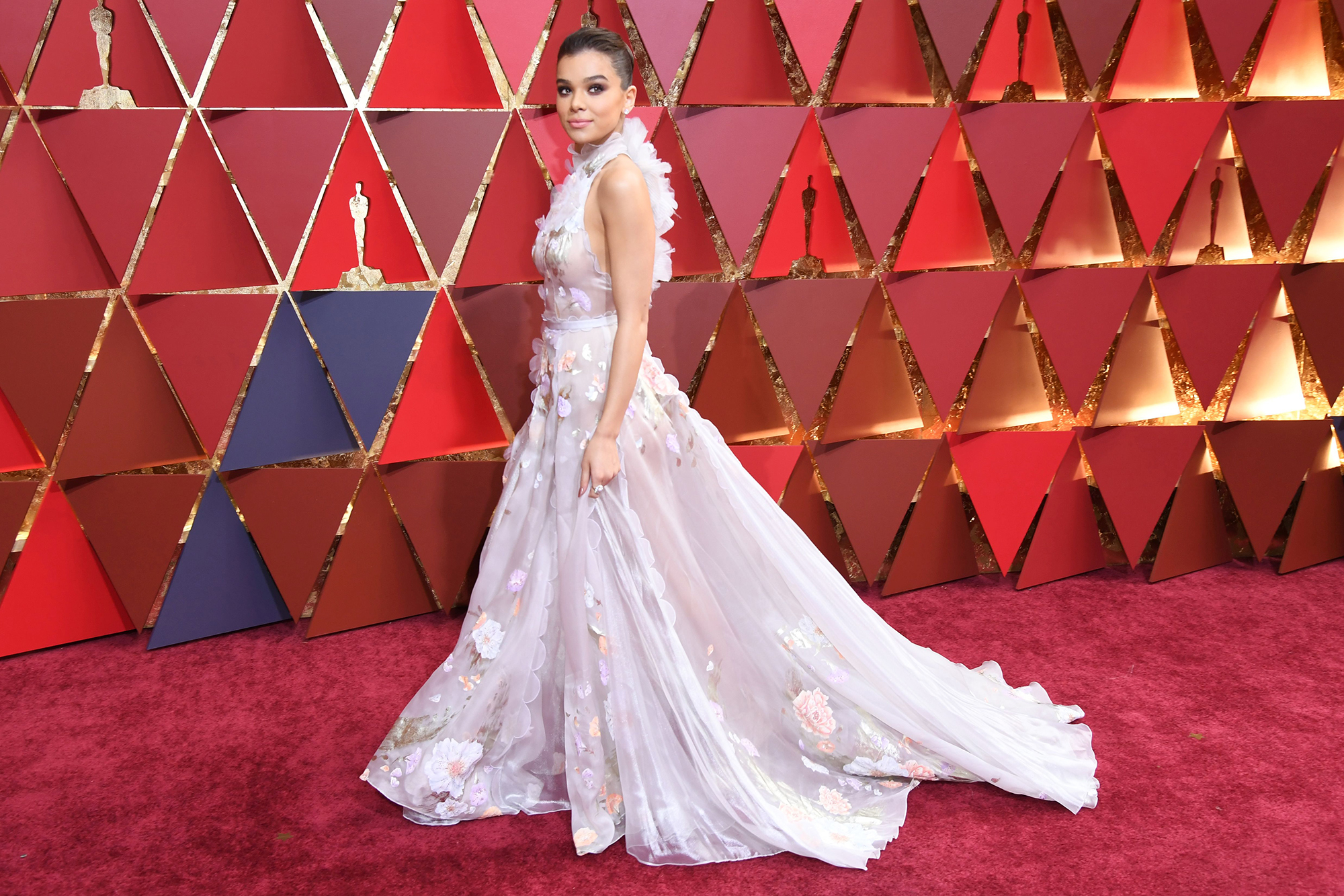2017 Academy Awards Red Carpet with E! Entertainment