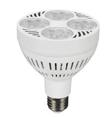 bulb1.png