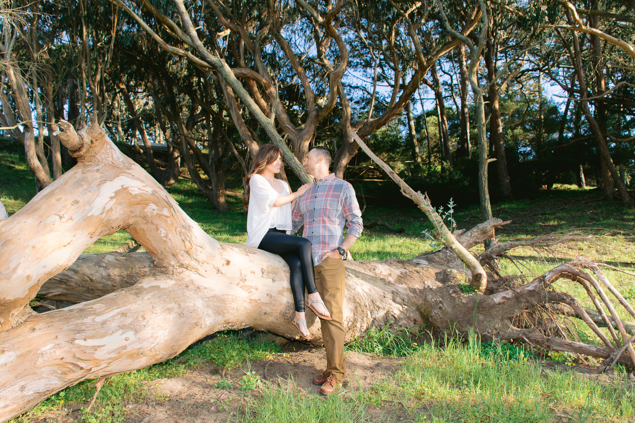 Woman sitting on fallen tree in San Francisco park looking into the eyes of her fiance.