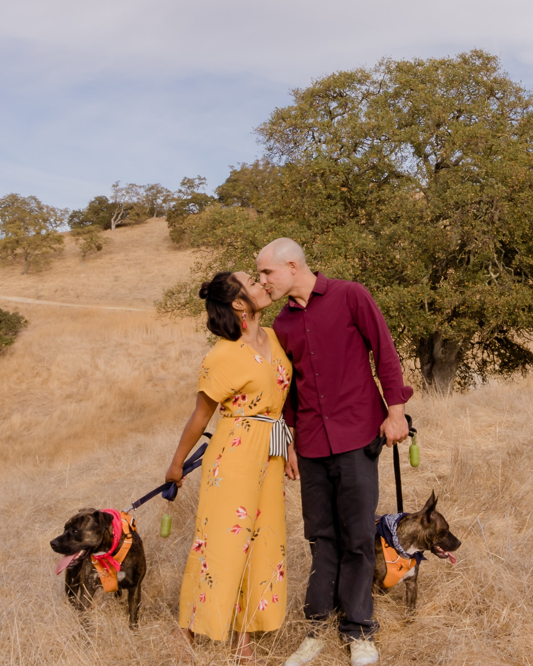 Walnut Creek Engagment Shoot with dogs.