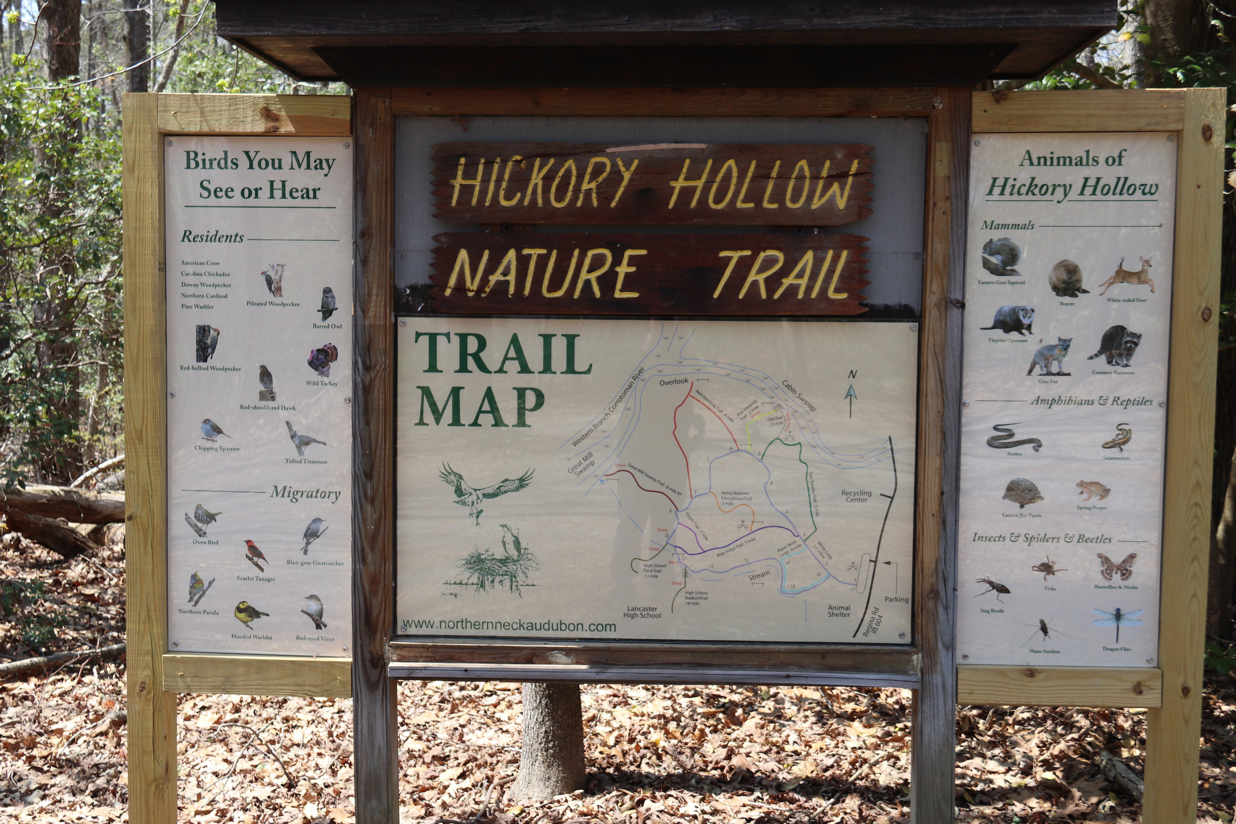 Hickory Hollow Trail Sign