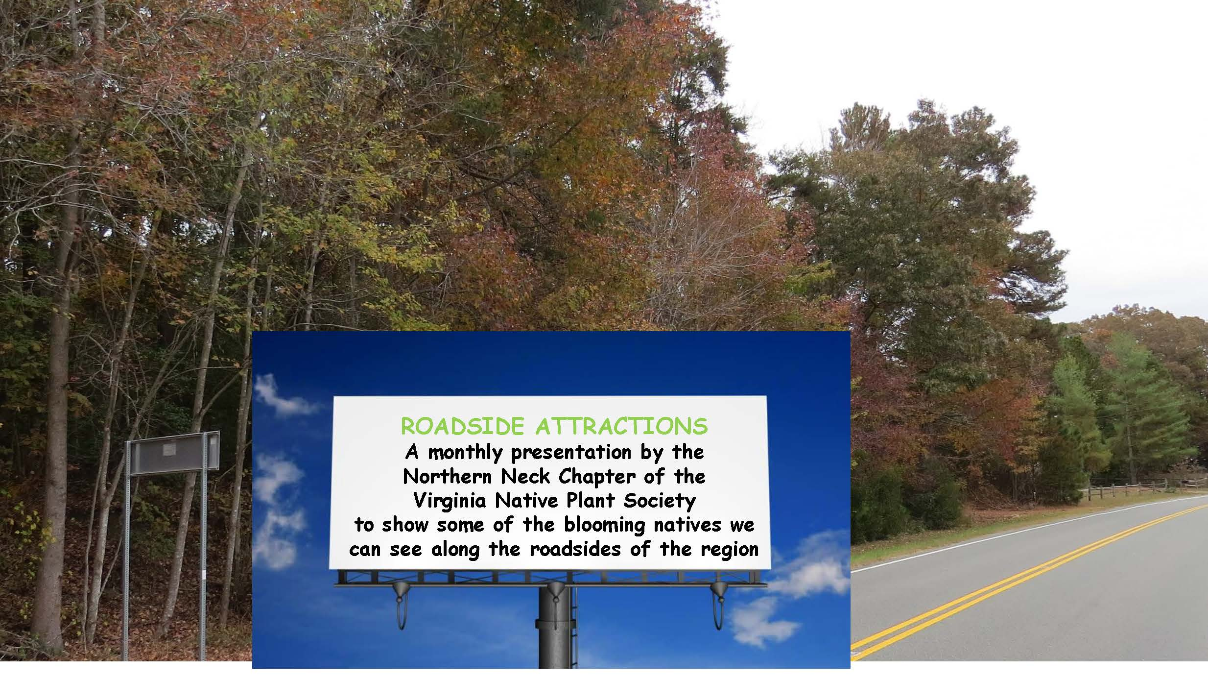 Roadside Attractions Nov. 2018 w text_Page_01.jpg