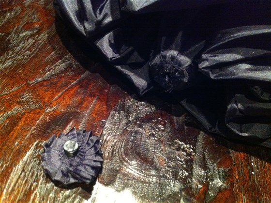 Bat Costume Photo by Amy E. Goodman.jpg