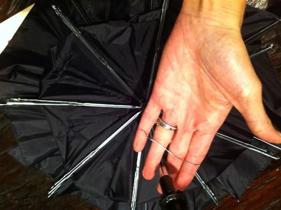 Bat Costume Amy E. Goodman photo 3.jpg