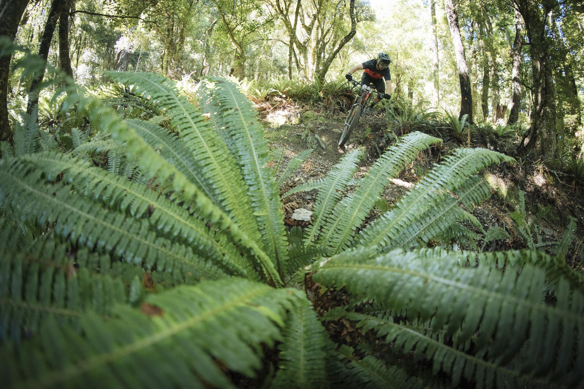NZ_Enduro18_DP_Sunday-05698.JPG
