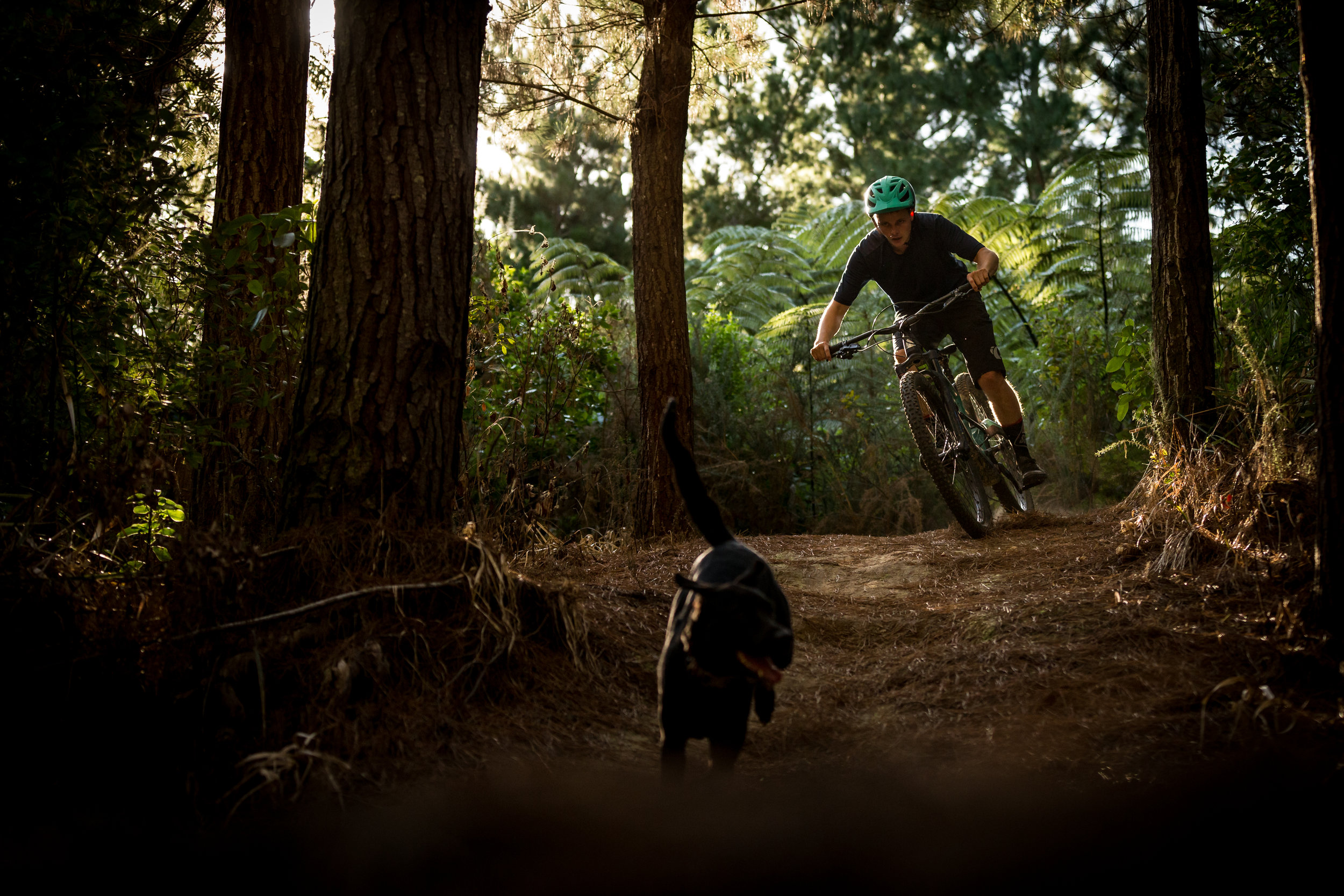 marin_wolfridge9_newzealandmountainbiker3.jpg