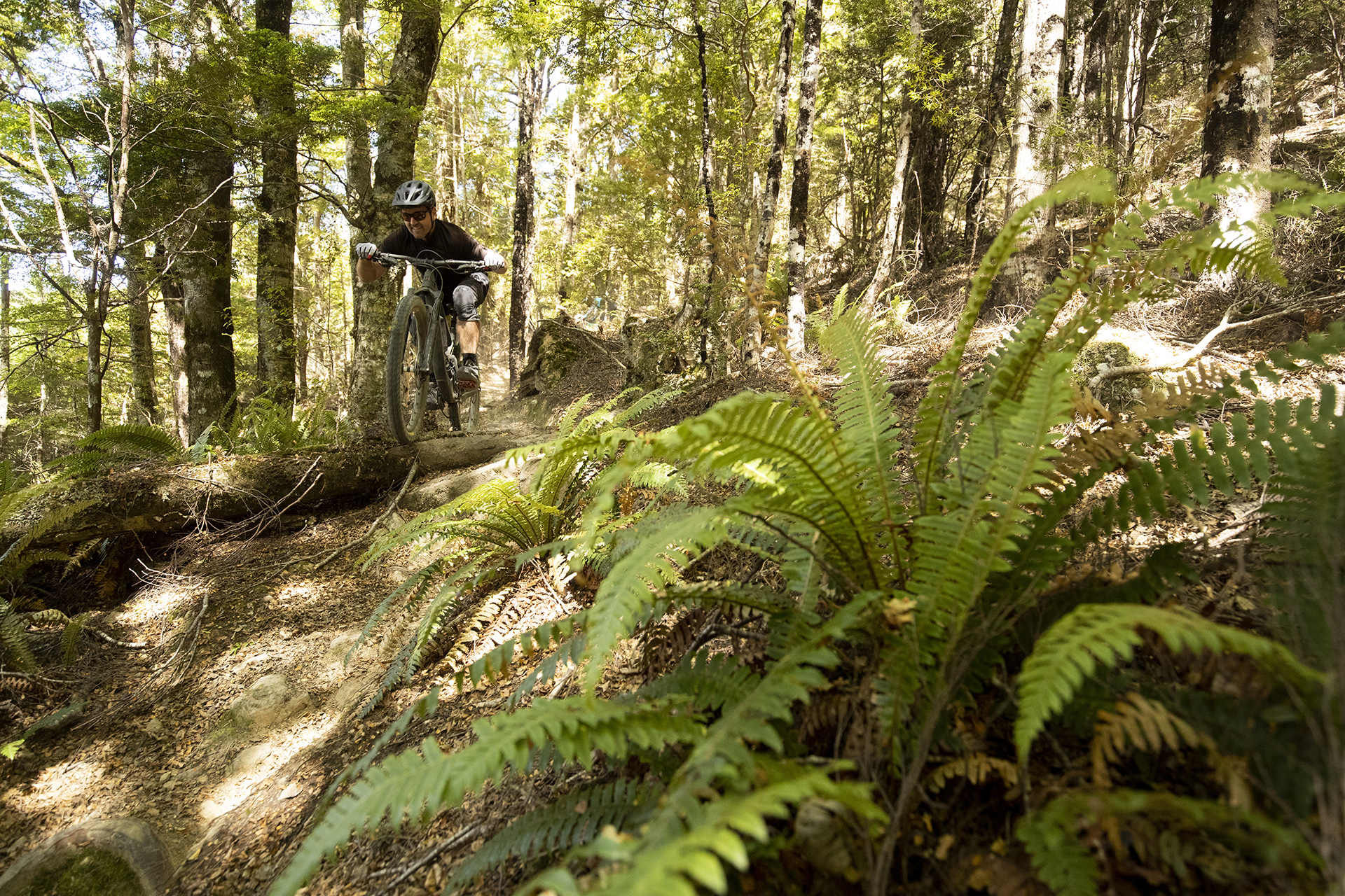 NELSON, New Zealand -  Carl Patton at the Wairoa Gorge MTB Park during the launch of the 2019 Santa Cruz Bicycles Megatower in Nelson, New Zealand. Photo by Gary Perkin