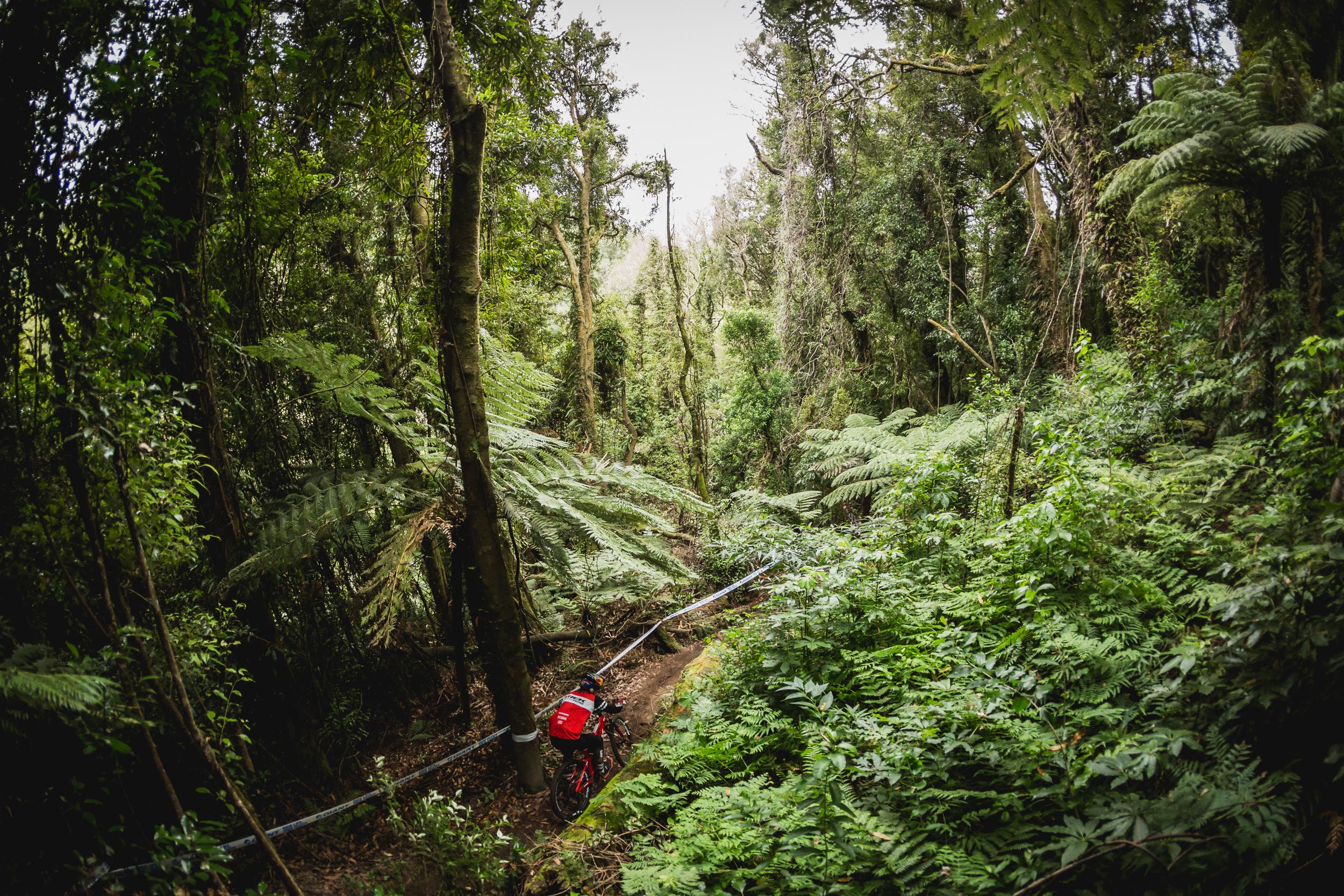 CMP-EWS19-Rotorua-D3-MidRes-6767.jpg