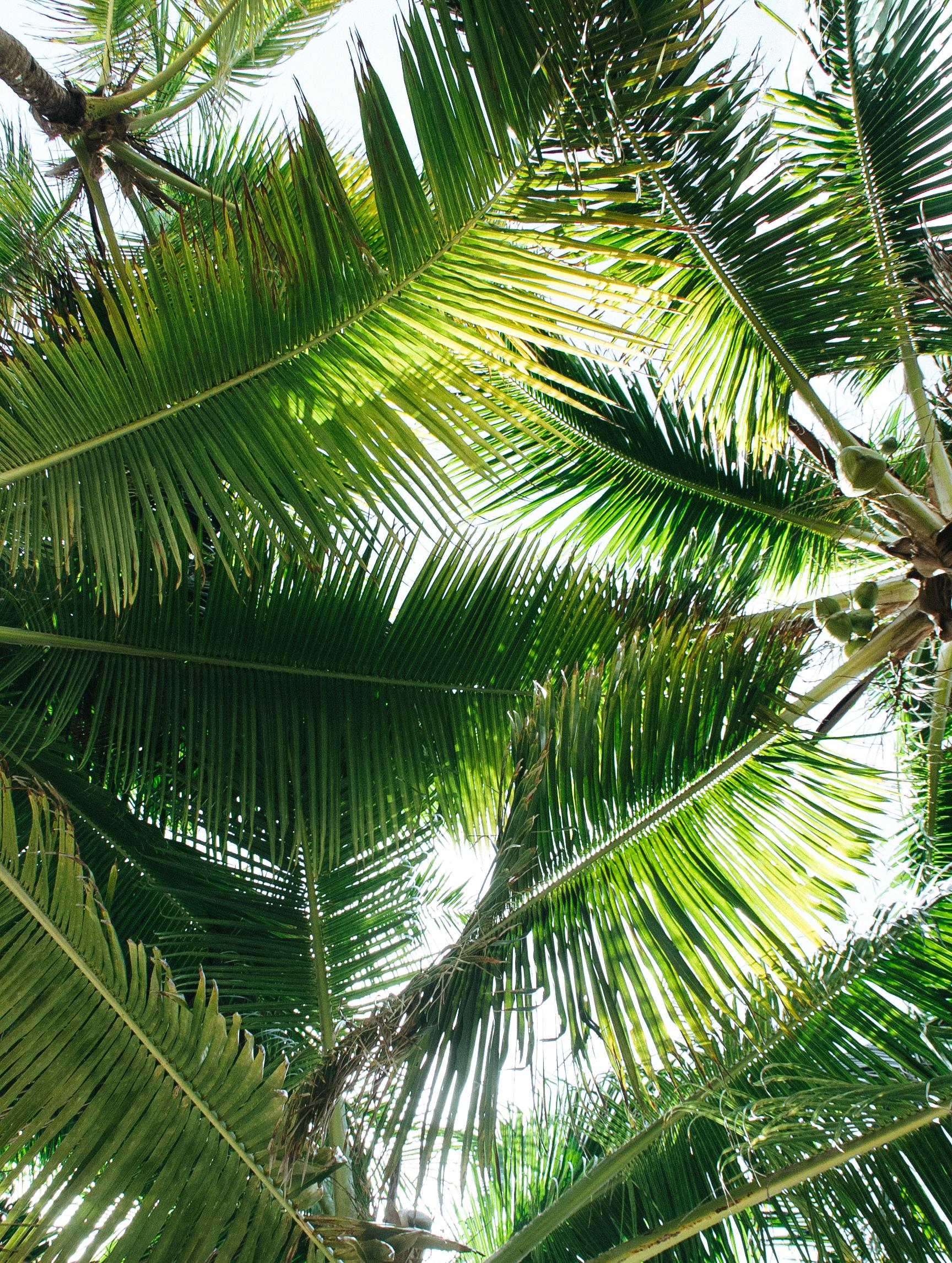 Soliman Bay Tulum - México Tropical® travel agency-1.jpg