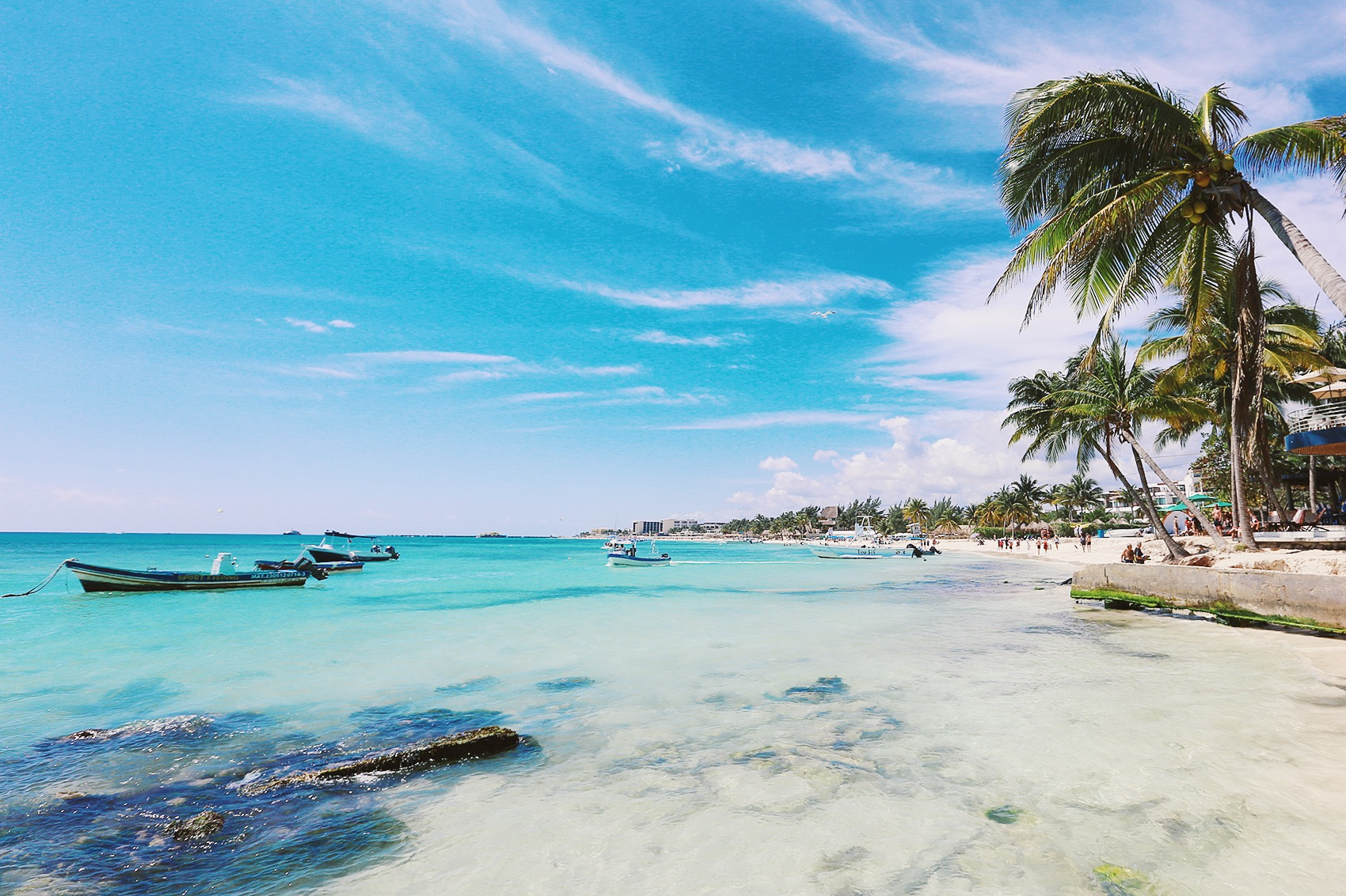 Playa Del Carmen México Tropical