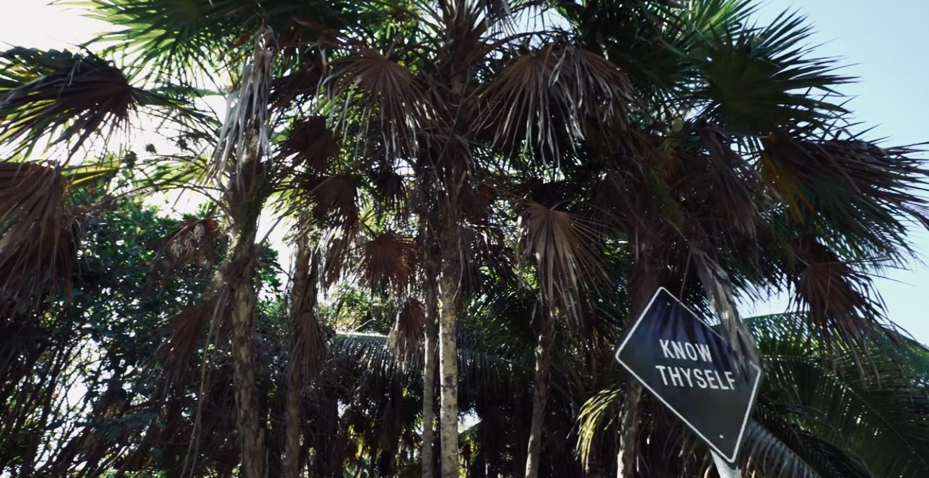 Mexico Tropical Travel Agency Tulum Blog Art Heart 09.jpg