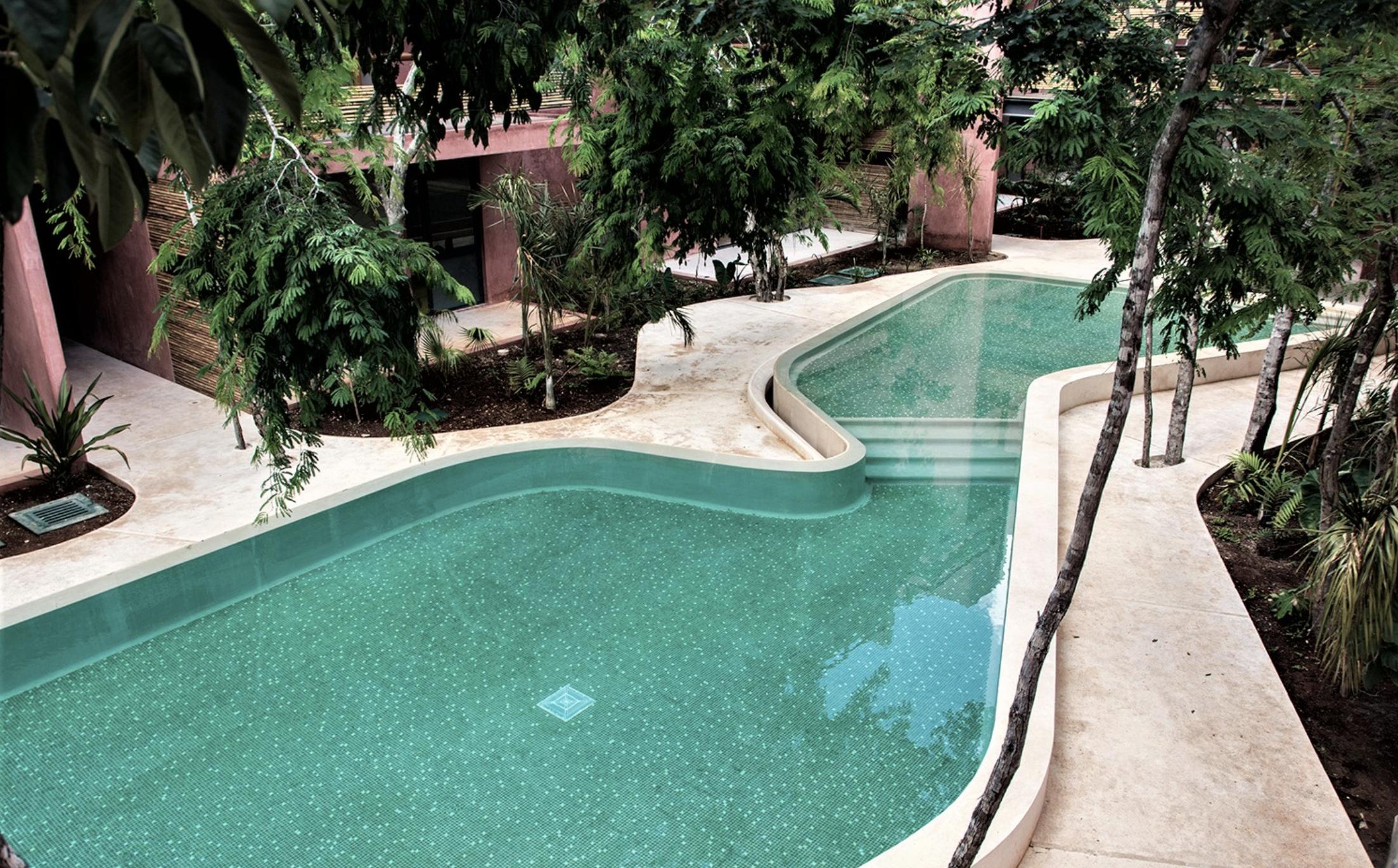 Un nivel más arriba - El Extra de México Tropical® <benefits, merch & social>