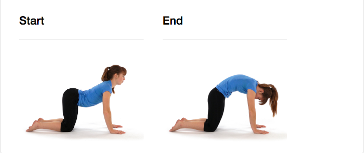 """Start on all fours with hands underneath the shoulders. Lift the head and chest simultaneously while letting the stomach sink and the lower back arch to perform the """"cow"""" pose. Then, round the back and let the head and neck drop while aiming to get the head and pelvis as close as possible, performing the """"cat"""" pose"""