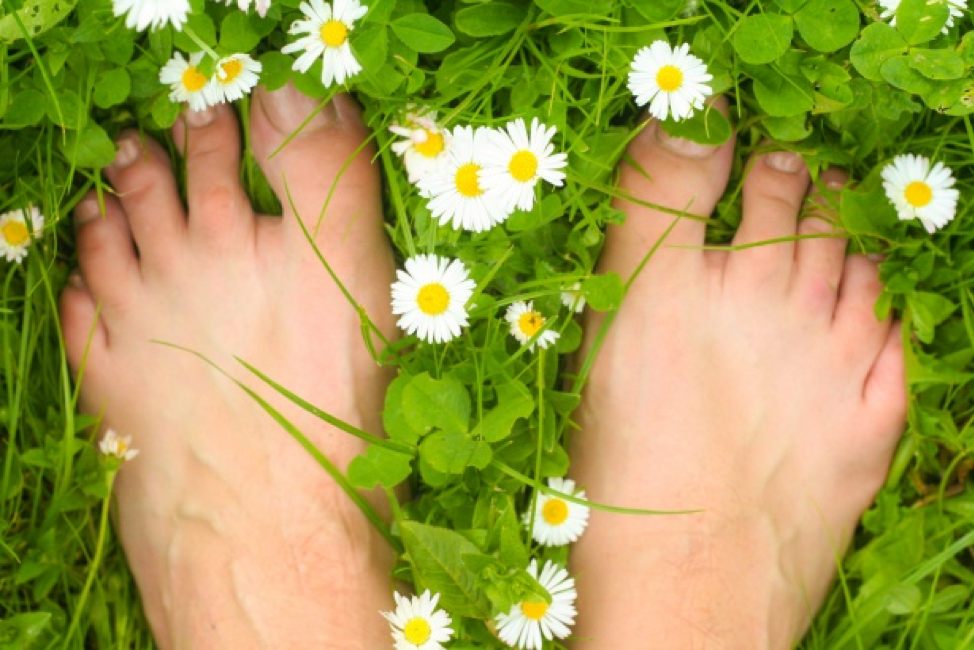 Feet in grass.png