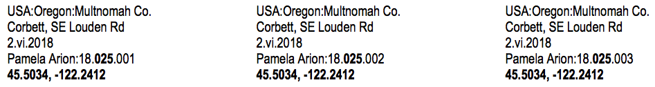 Here are three consecutive labels for Gorge Atlas team member Pam Arion. All three labels are from Pam's 25th sample collection event (indicated in bold on the fourth line). The number  before  '25' (i.e., '18') indicates the year (i.e., to differentiate the 25th sample event in 2018, from the 25th event in 2019). The number  after  '25' (i.e., either '1','2' or '3') signify the specimen number (i.e., Pam caught 3 bees on sample event '25' and each bee gets its own label.
