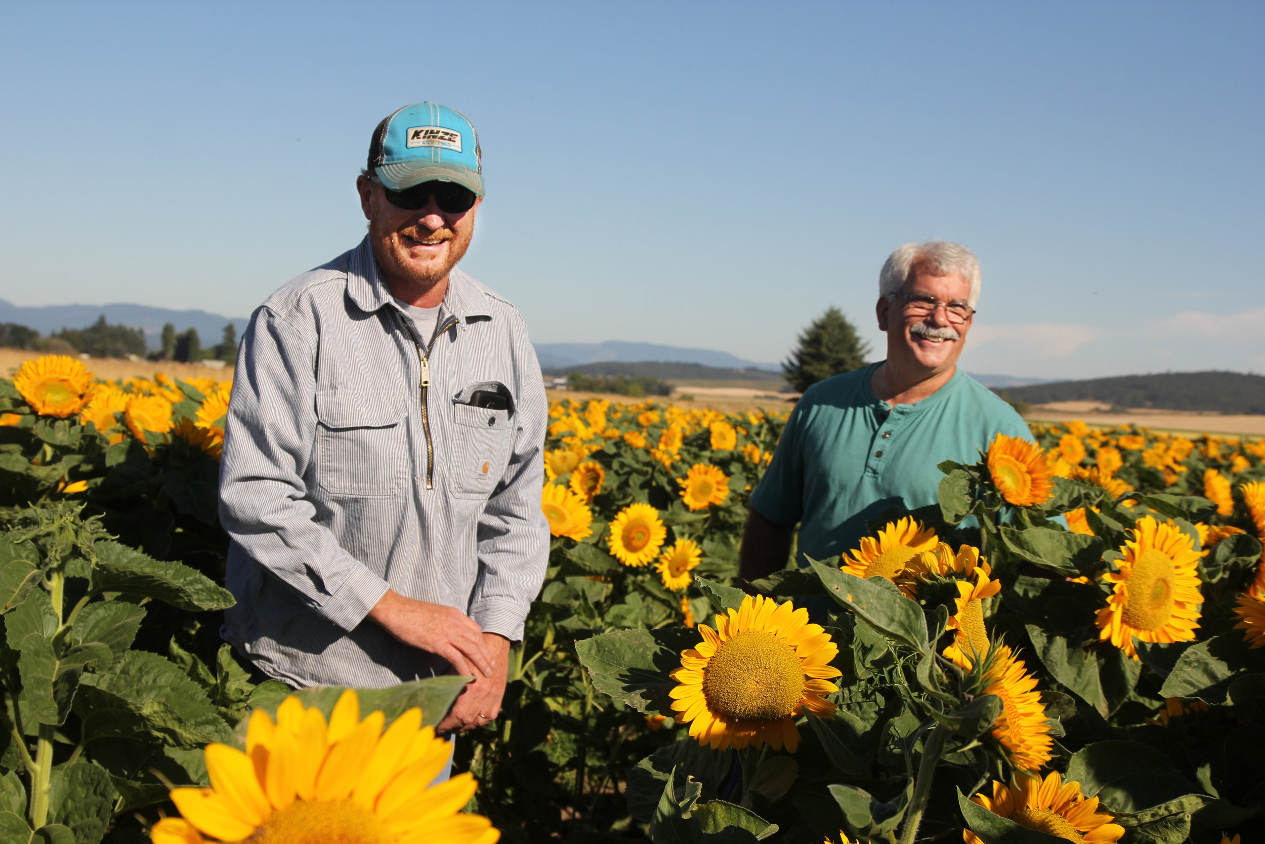 """Quite simply, bees and Mulkey Farms need each other. """"If we don't have bees, we don't harvest seed,"""" says Garth."""