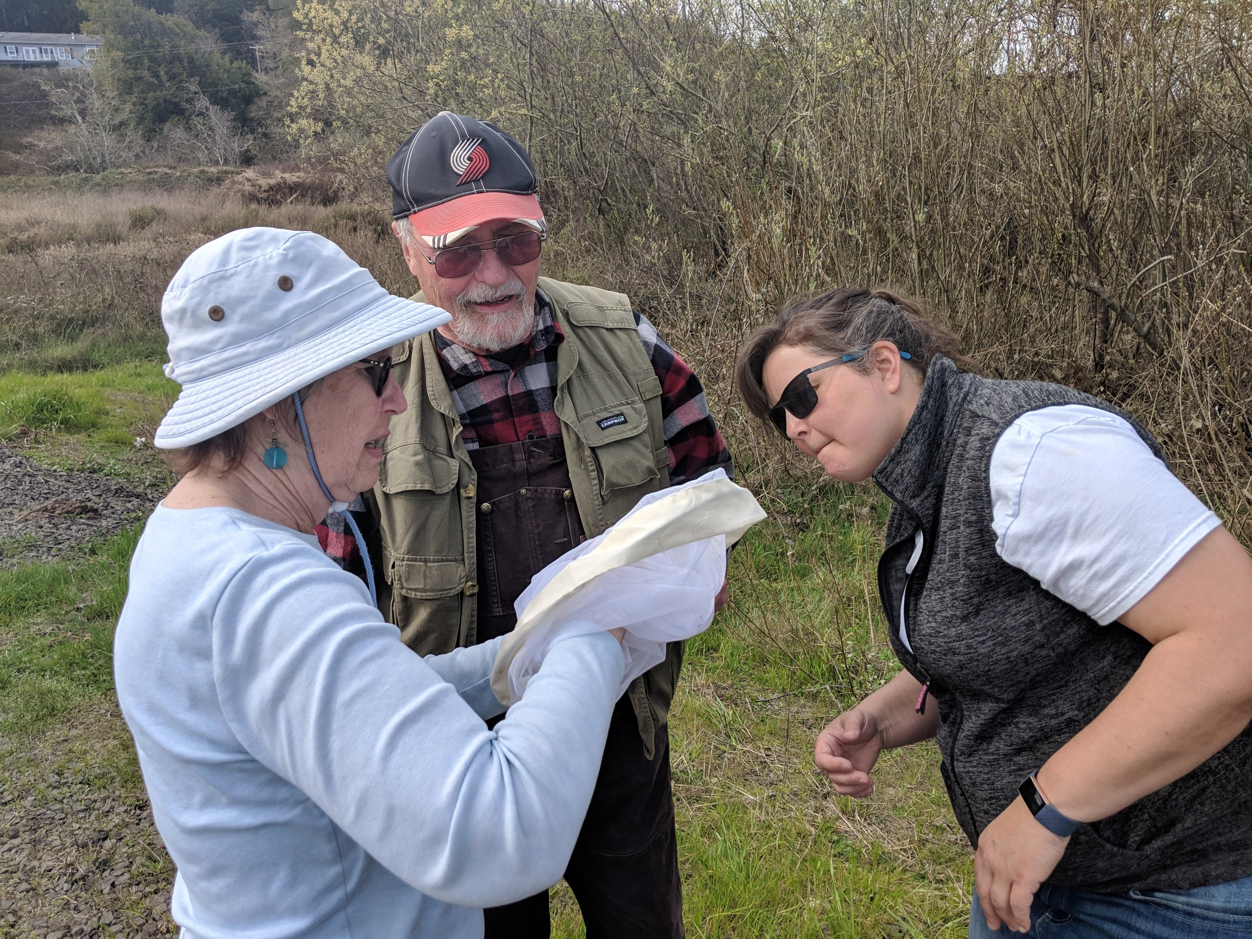 The Myrtle Point team sampling willow this past Sunday (March 24).