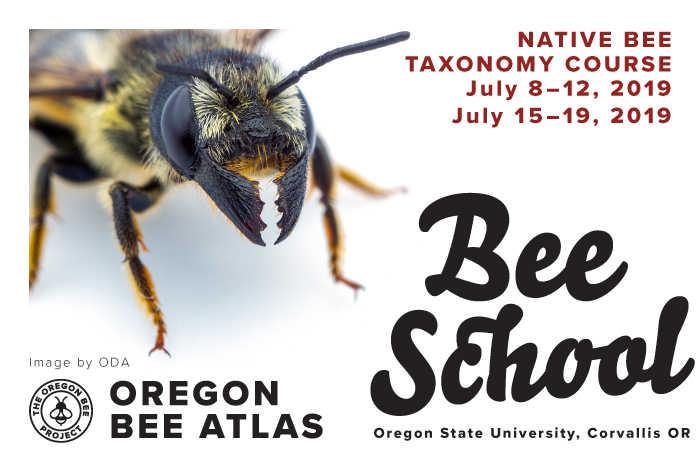 2019-04_OBP_OregonBeeSchool_Graphic.jpg