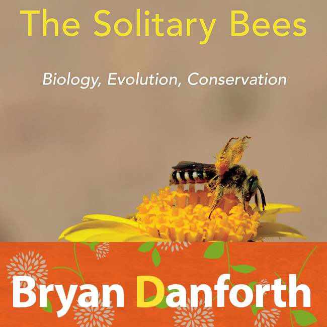There is a great new book out on Solitary Bees. Just out. We talked to the author of the book a few weeks ago. Listen here:  http://blogs.oregonstate.edu/pollinationpodcast/2019/08/12/107-bryan-danforth-the-solitary-bees/