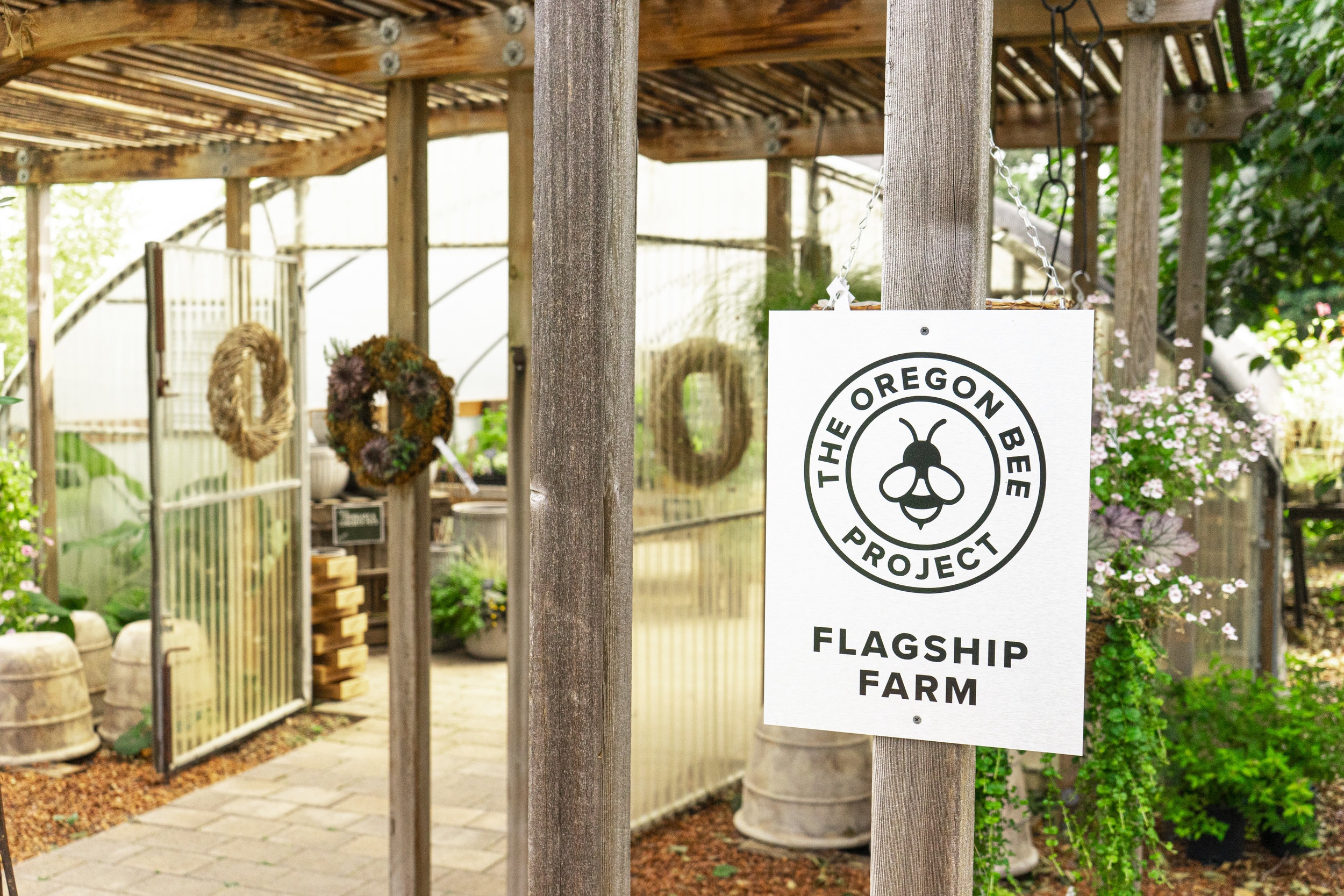 Red Ridge Farms proudly displays their Flagship Farm sign in front of their greenhouse.