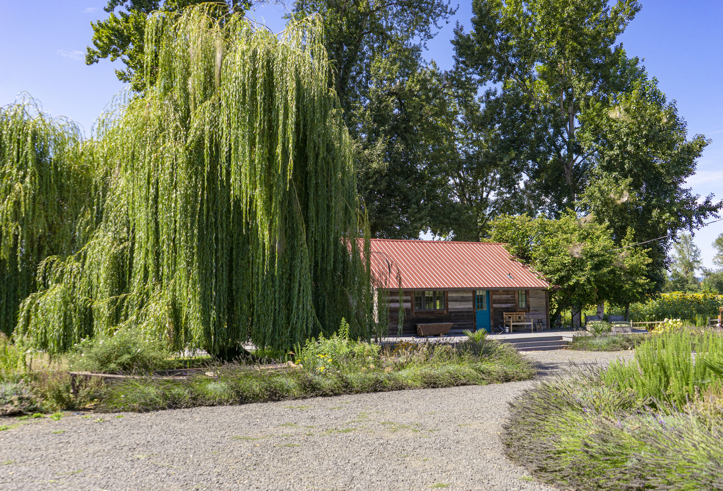 willow bar.jpg