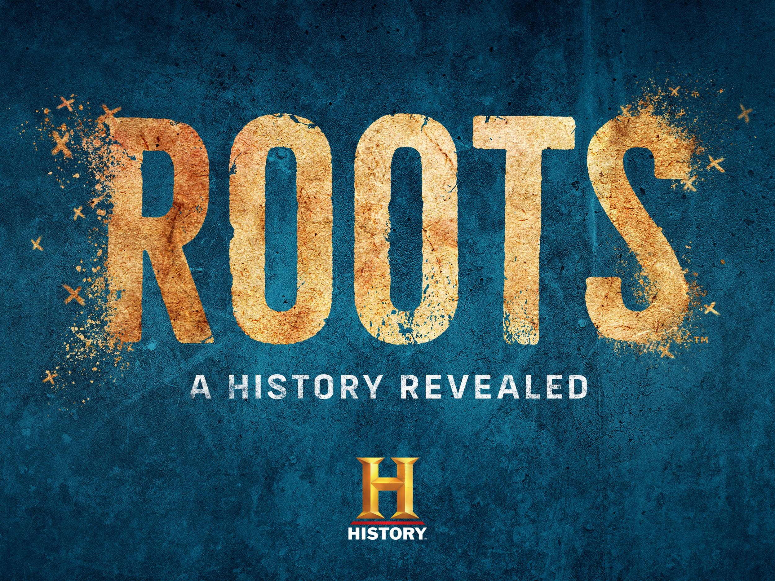 Roots: A History Revealed