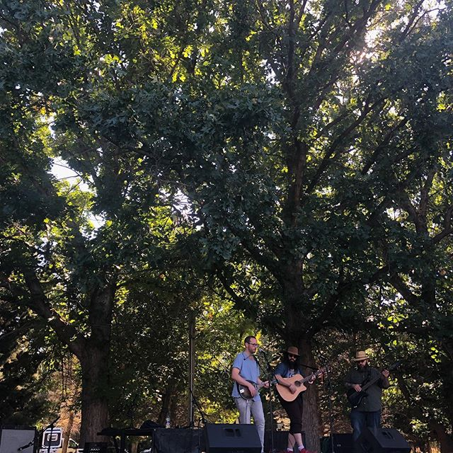 The Trees The Trees in The Trees! 1000 Springs Art Festival was killer! #music #art #3piece #bass #guitar #mando #harmonica #harmonies #songwriter #dudes #nudes #barns #cows