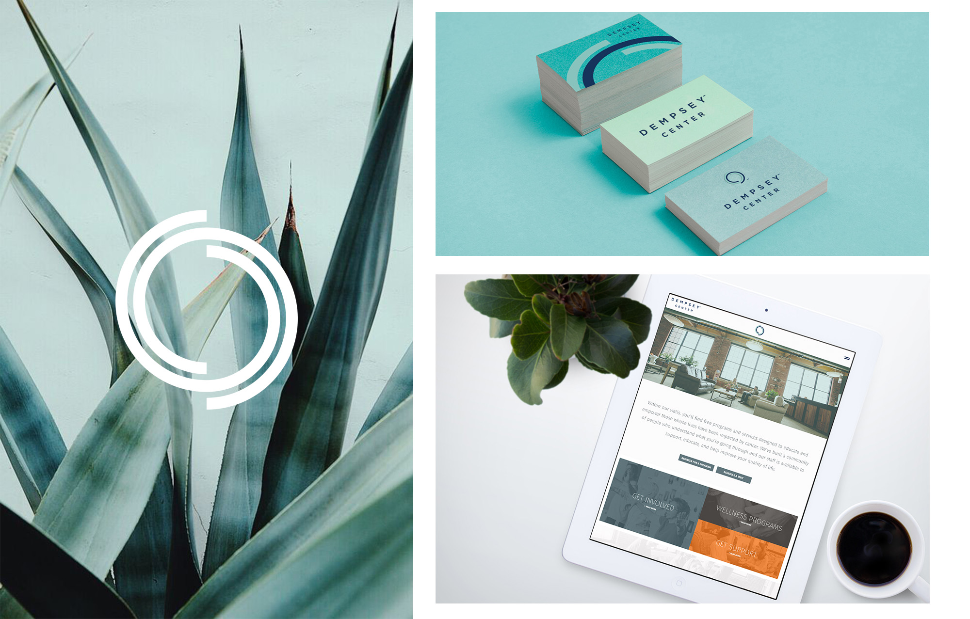 Dempsey Center identity, collateral and digital experience