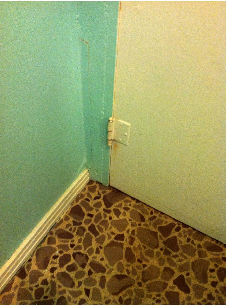 cornered.jpg