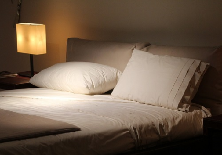 Bed Bug Control: 4 Facts You Didn't Know About Bed Bugs