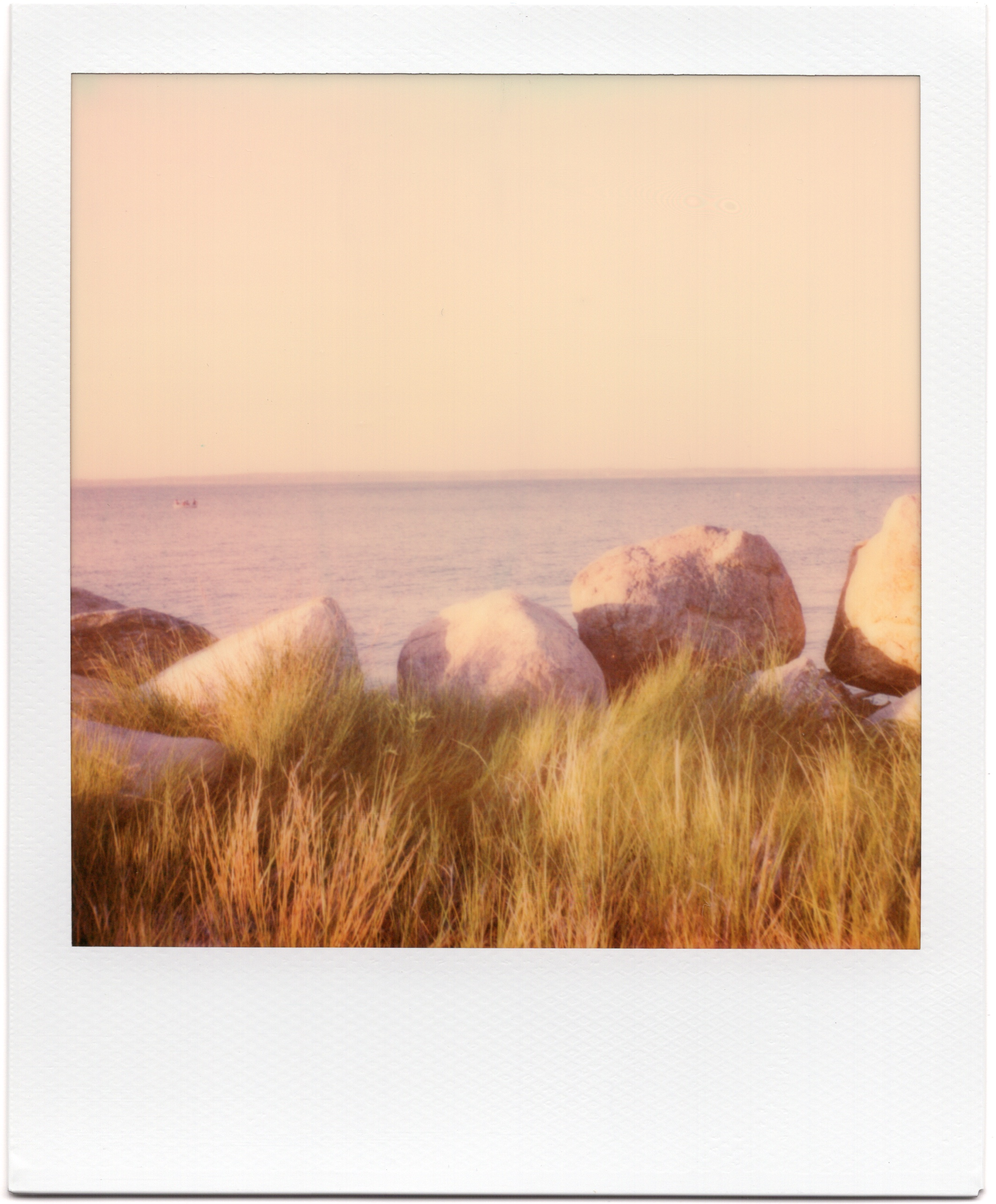 Springs Rocks.jpg