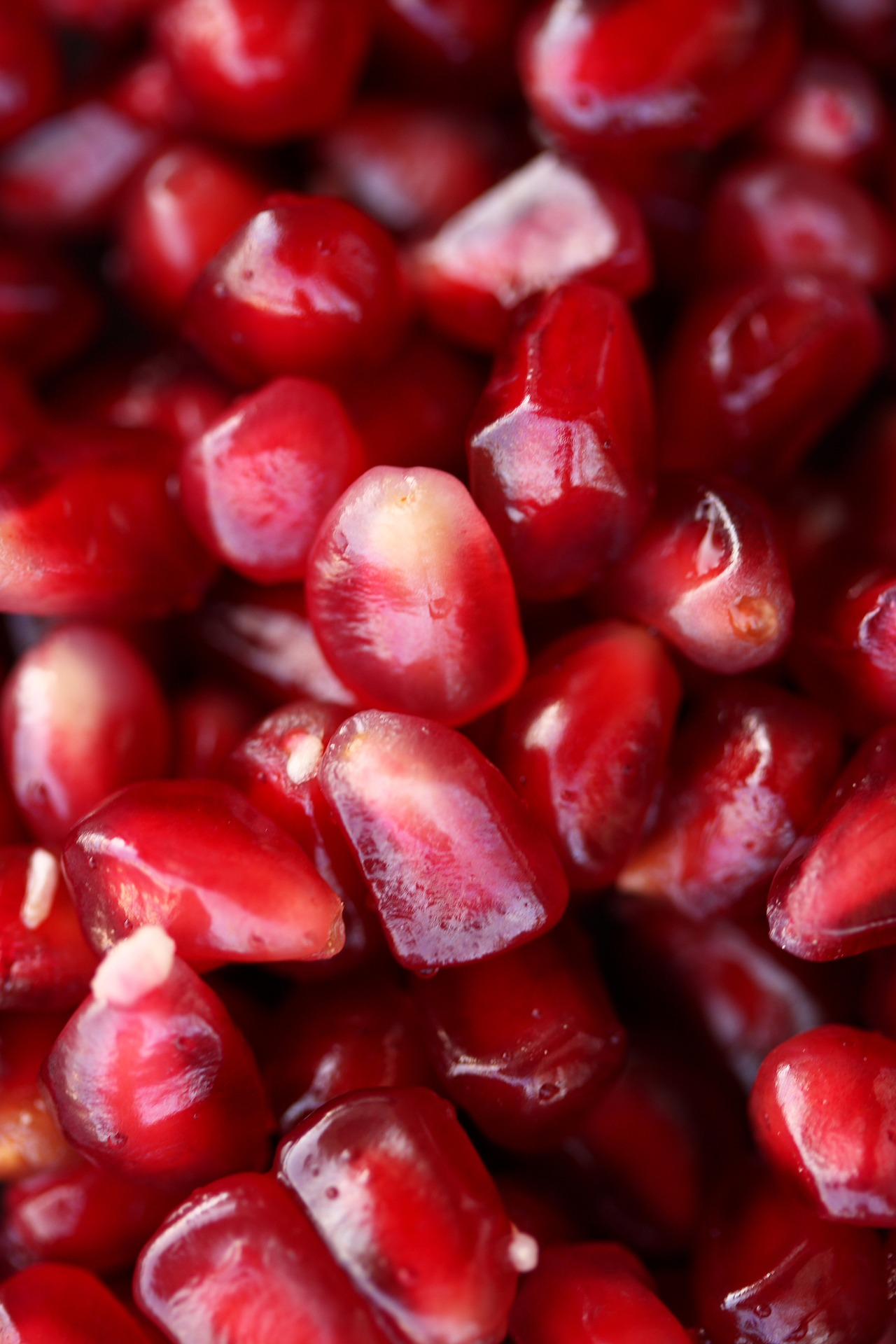 pomegranate-2350545_1920.jpg