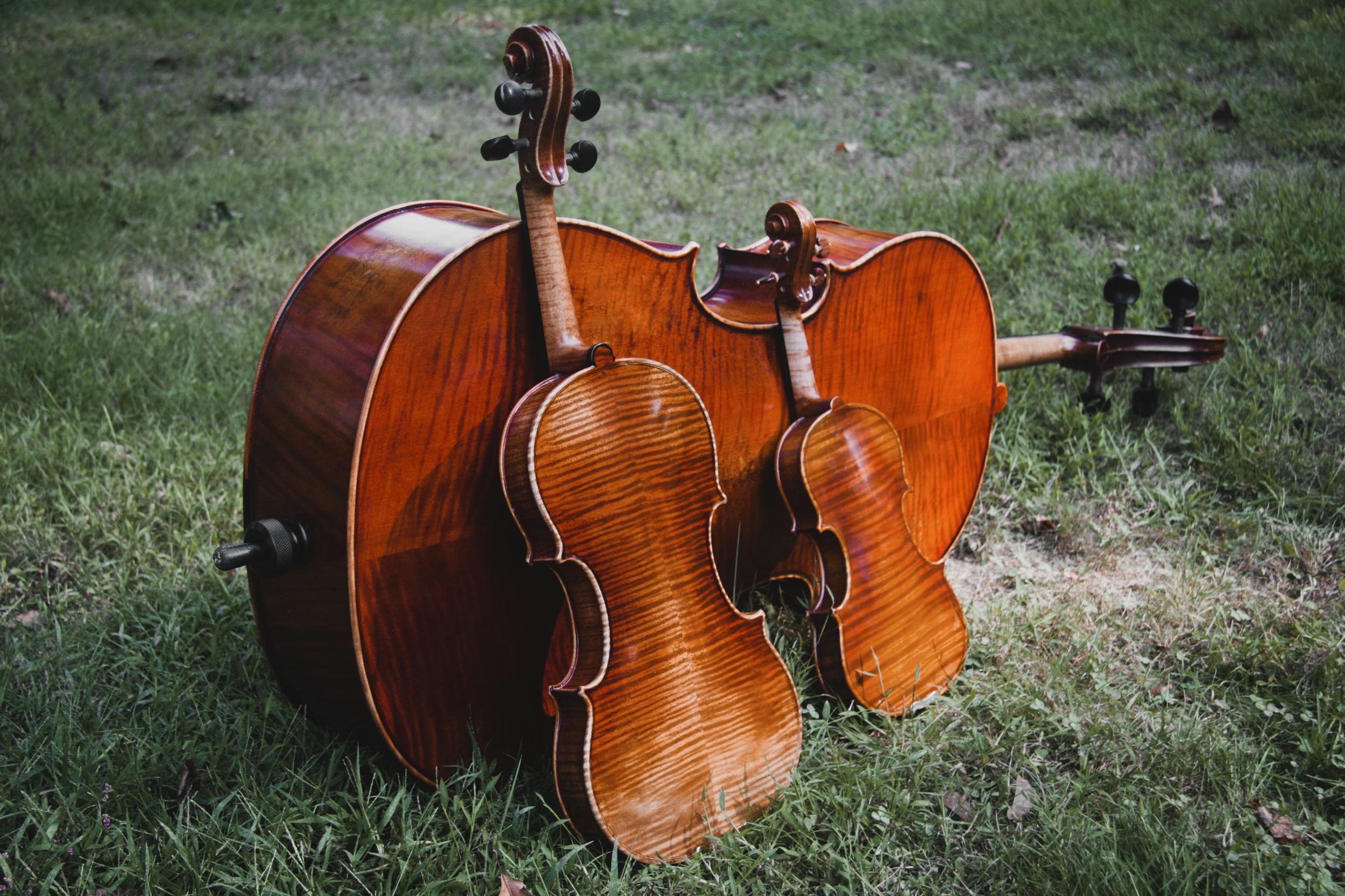 Cello_Violins_Grass.jpg