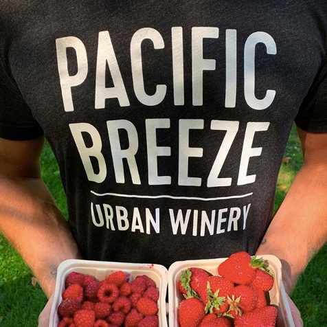 pacific breeze winery-creative-boulevard-2.png