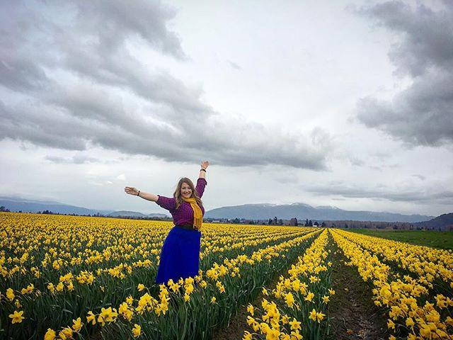 Oh PNW, I miss you so much. You (and Alec Baldwin) have my heart. 🌻🌻🌻🗻🌄 #skagitvalley #daffodils #myheart #nature #PNW #natureporn #washington #youllnethebrideillbethegroom #adaffodilineveryroom