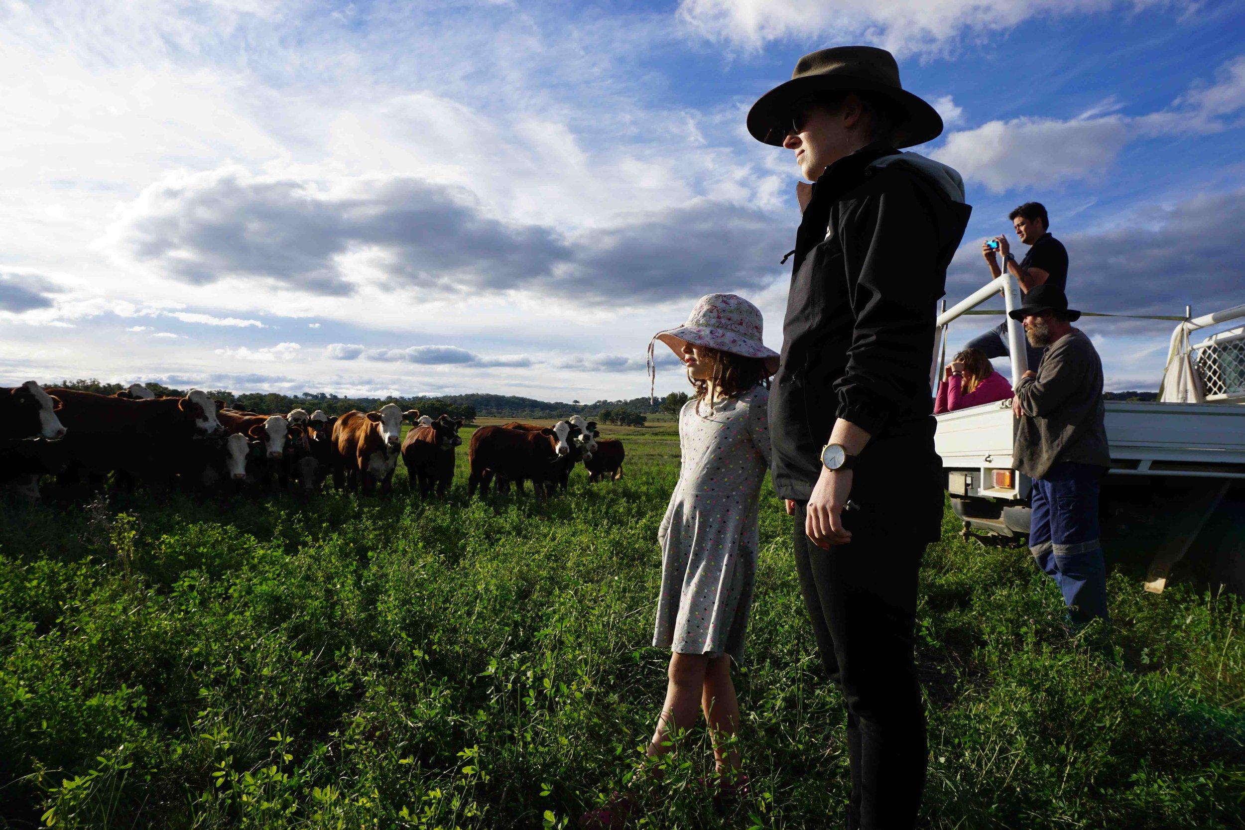 ksca at farm 2.jpg