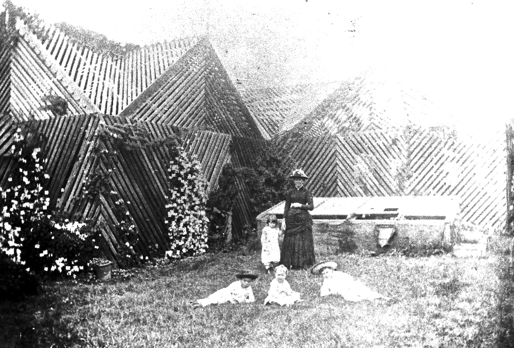 Bush- or shade-house at Toowoomba residence, Roslyn, ca. 1900. Sourced from the   enclos*ure blog