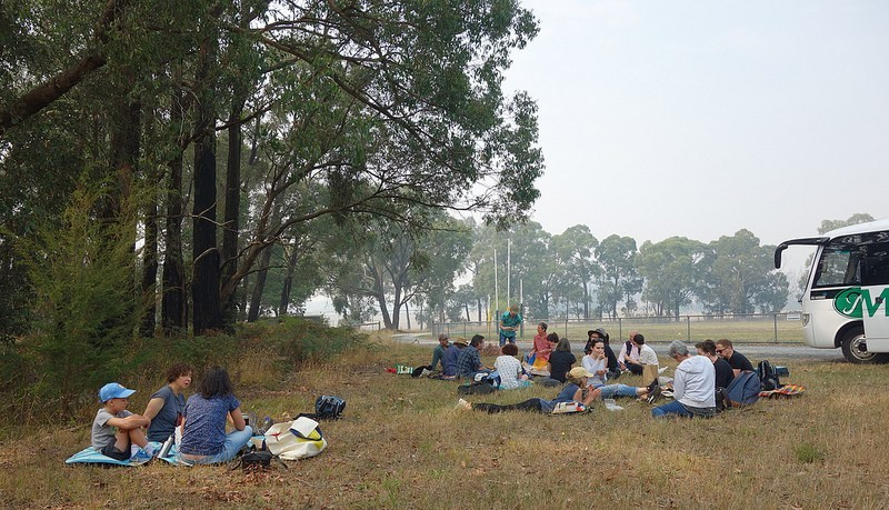 Picnic lunch at Hallora Recreation Reserve.