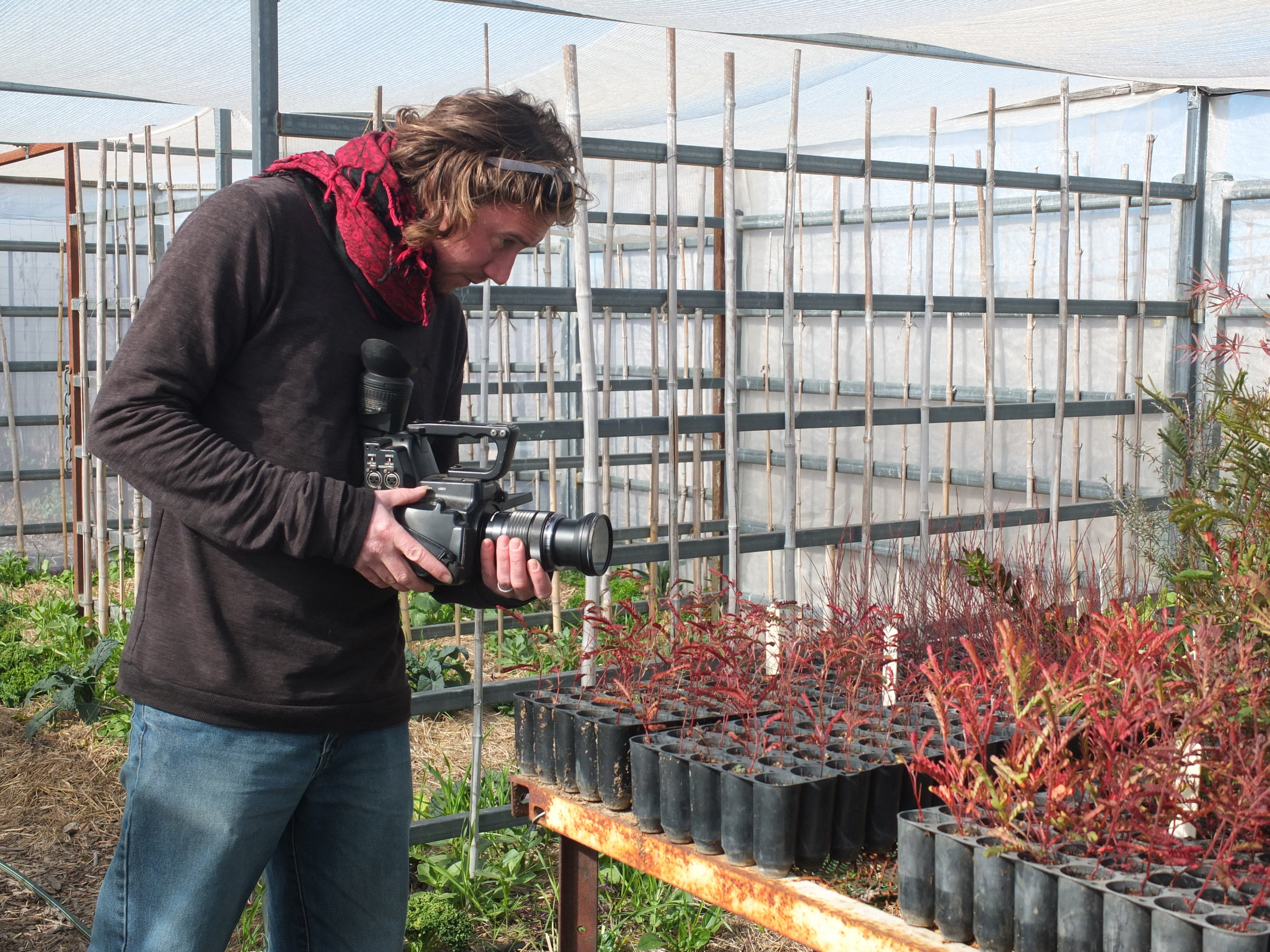 Matt Woodham in action at Banded Bee Farm