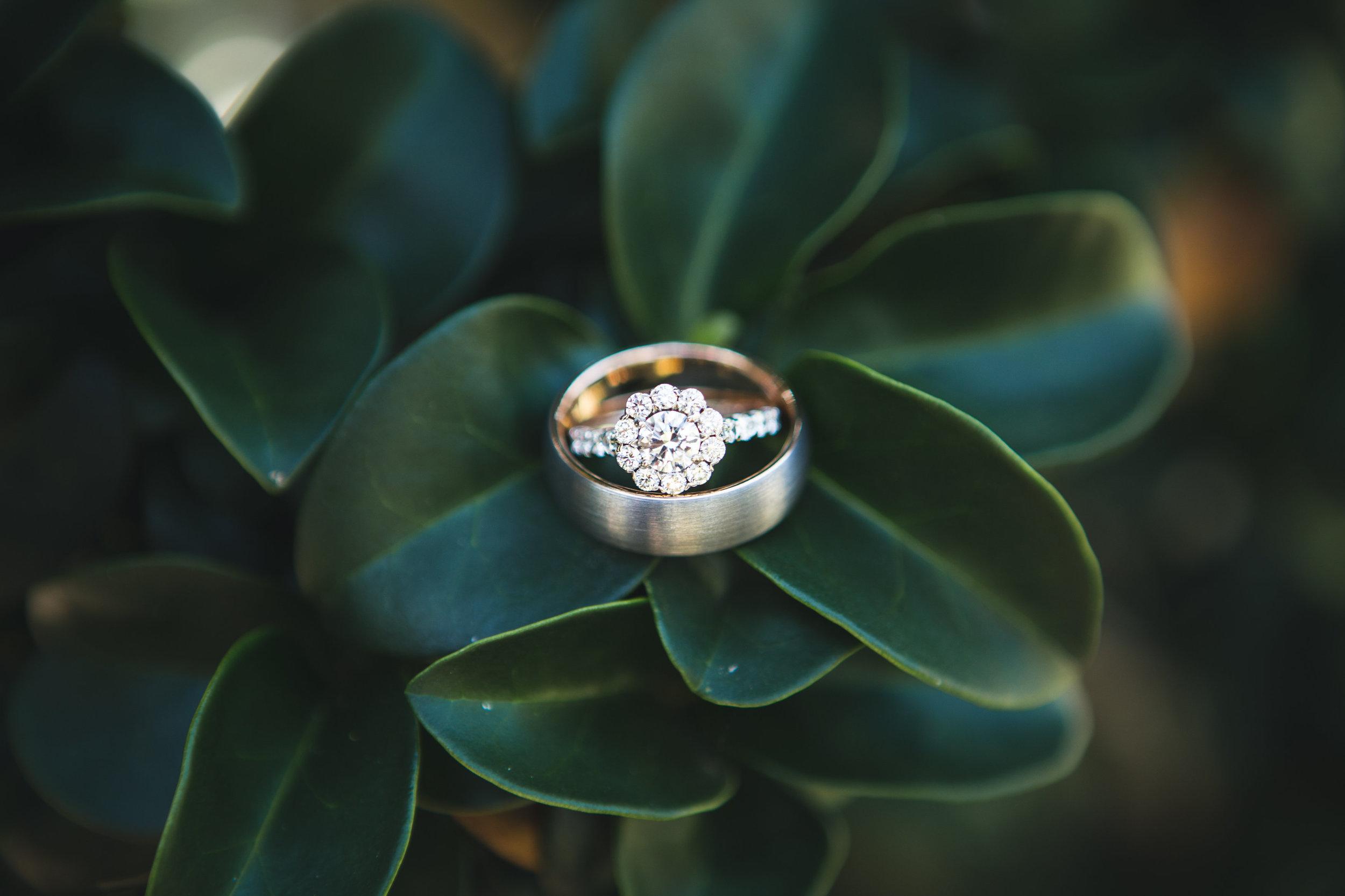 Alex Nelly Wedding-0 Favorites-0002.jpg