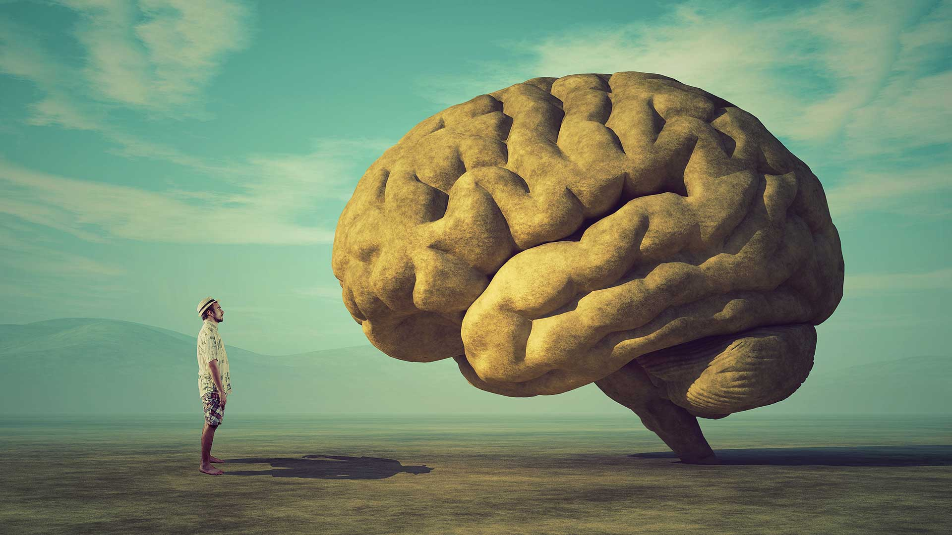 person-brain-illustration_shutterstock_032541603.jpg