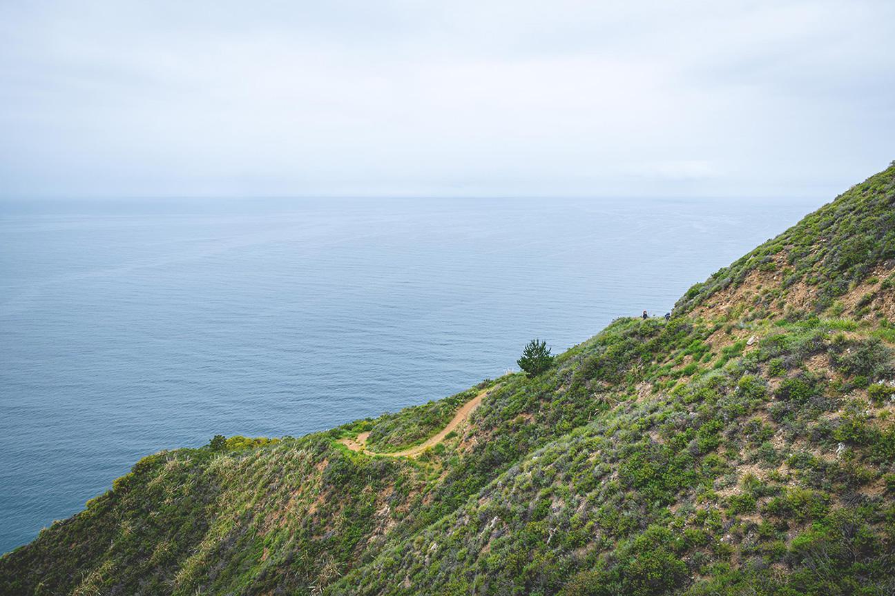 WildDharma-coast.jpg